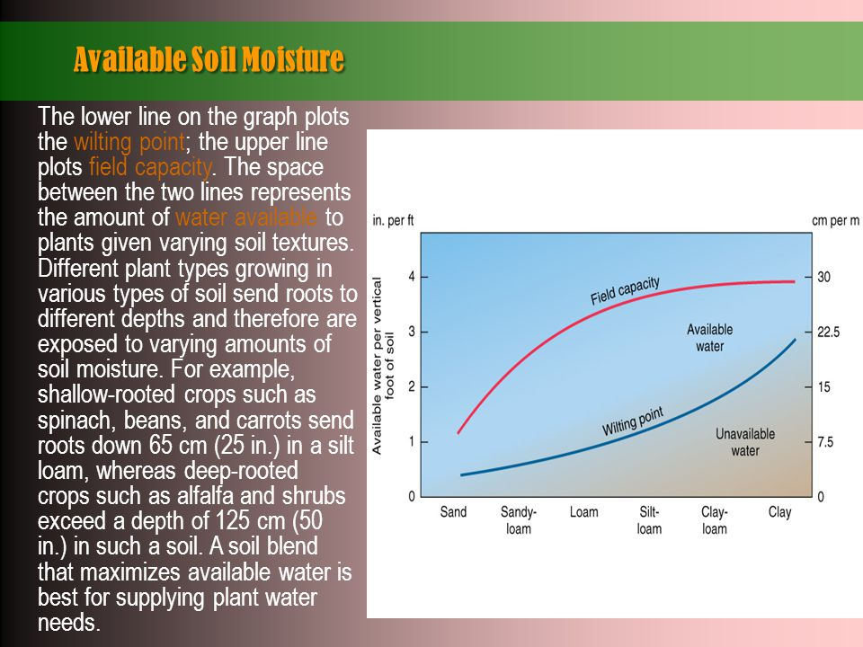 Available Soil Moisture