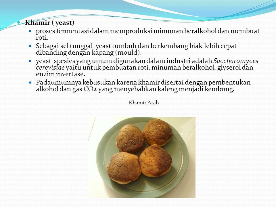 Khamir ( yeast) proses fermentasi dalam memproduksi minuman beralkohol dan membuat roti.