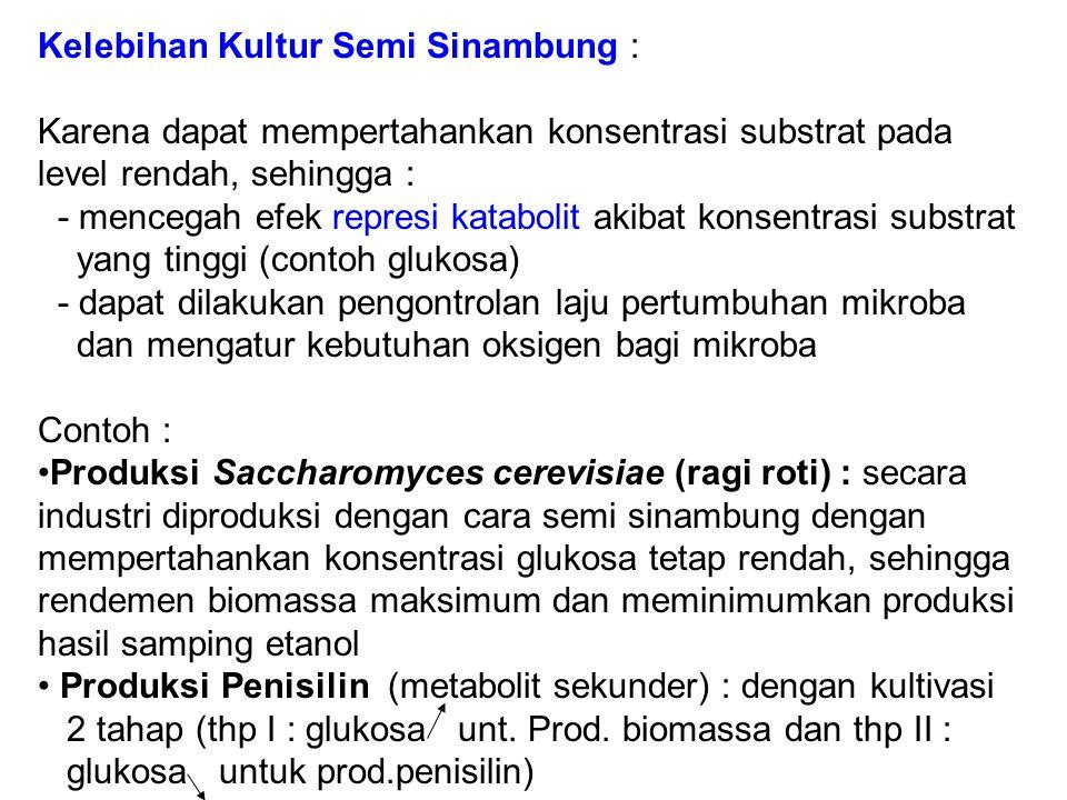 Kelebihan Kultur Semi Sinambung :