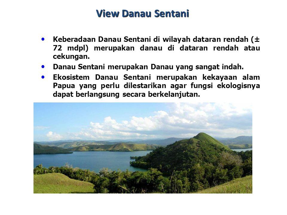 View Danau Sentani Keberadaan Danau Sentani di wilayah dataran rendah (± 72 mdpl) merupakan danau di dataran rendah atau cekungan.