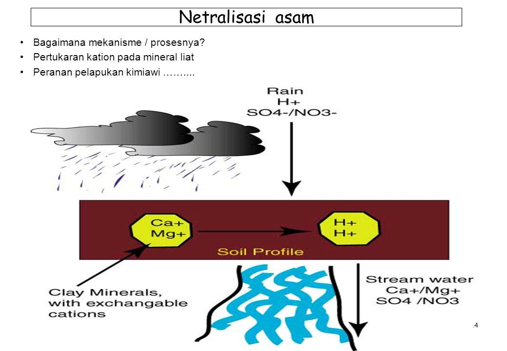 Netralisasi asam Bagaimana mekanisme / prosesnya