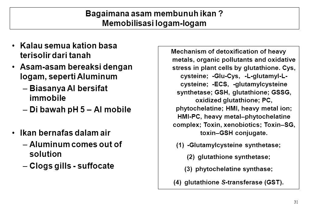Bagaimana asam membunuh ikan Memobilisasi logam-logam