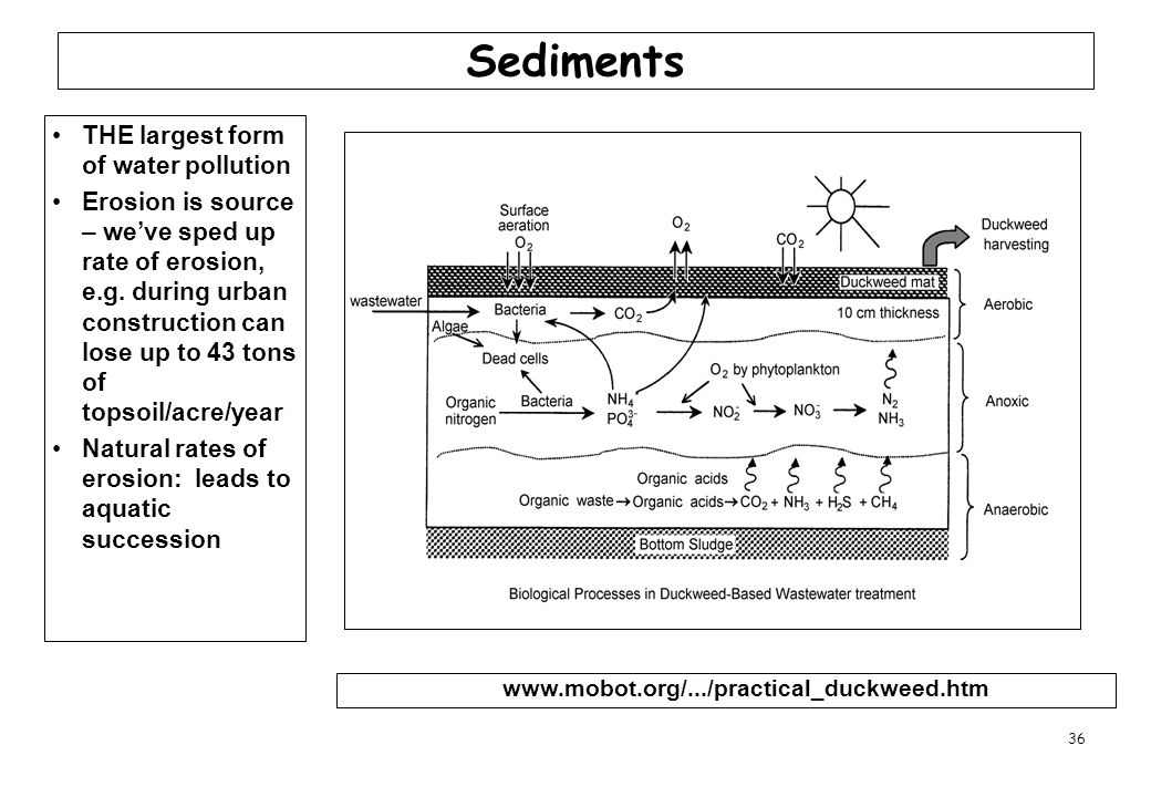 Sediments THE largest form of water pollution