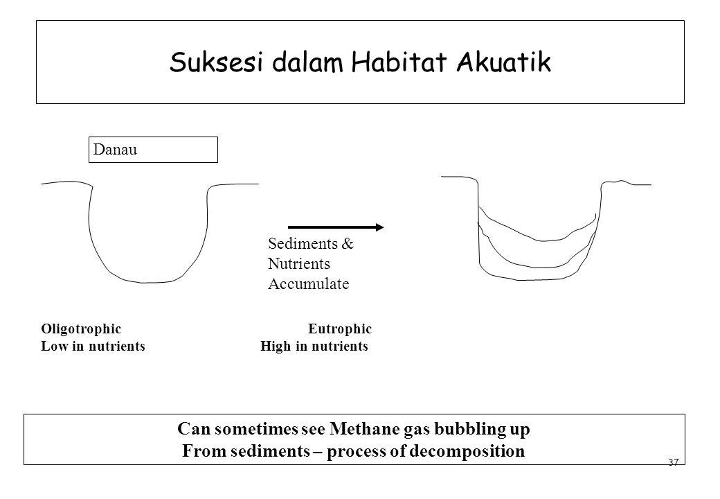 Suksesi dalam Habitat Akuatik
