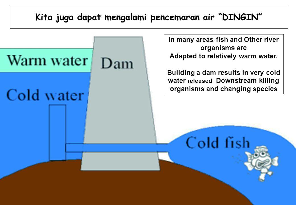 Kita juga dapat mengalami pencemaran air DINGIN