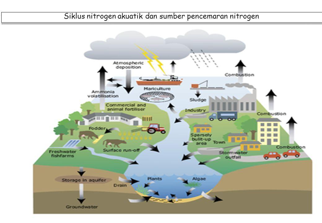 Siklus nitrogen akuatik dan sumber pencemaran nitrogen