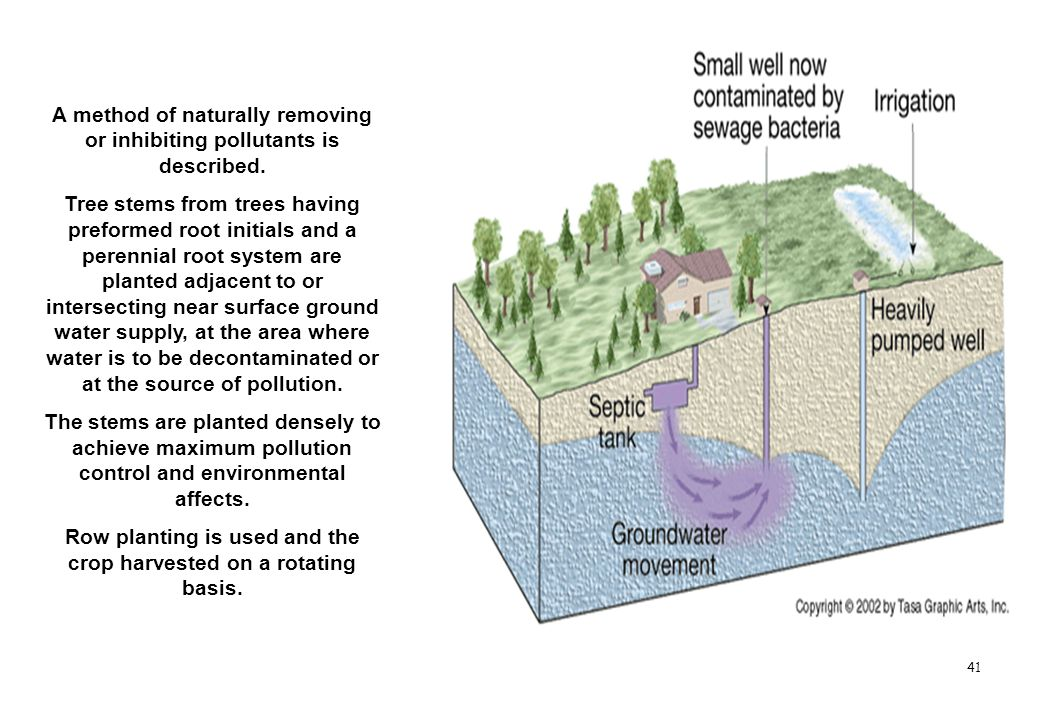 A method of naturally removing or inhibiting pollutants is described.