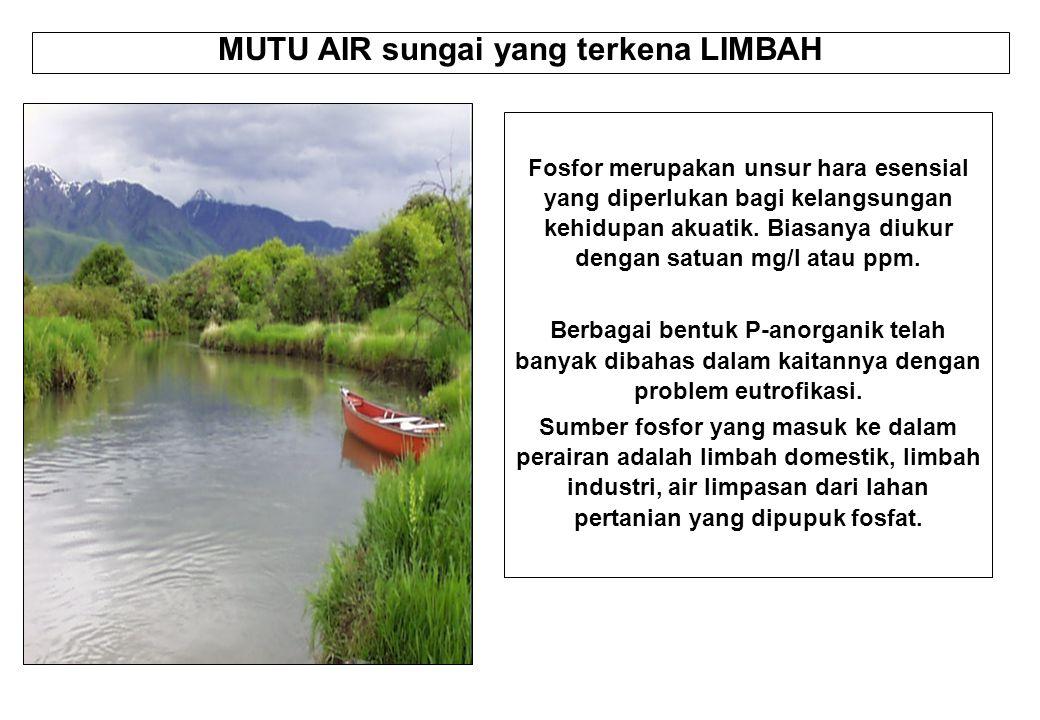 MUTU AIR sungai yang terkena LIMBAH