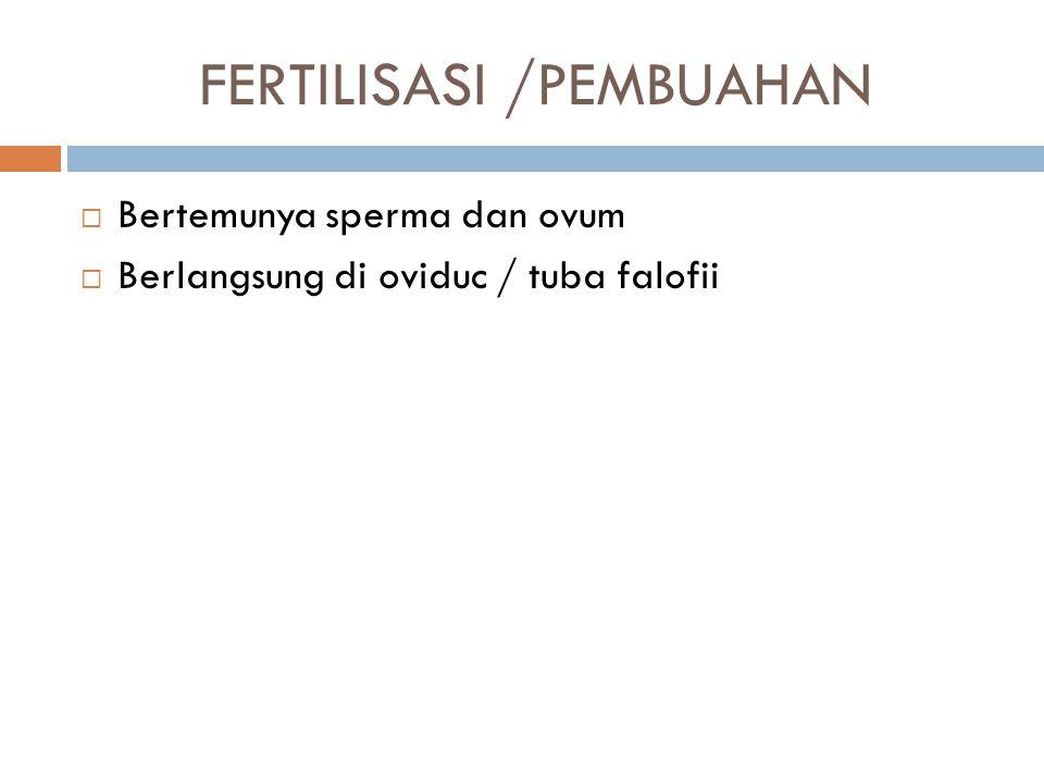 FERTILISASI /PEMBUAHAN