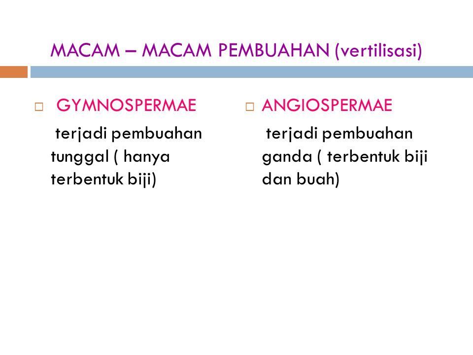 MACAM – MACAM PEMBUAHAN (vertilisasi)
