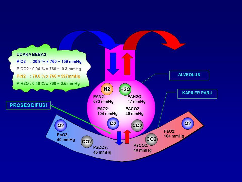 N2 H2O PROSES DIFUSI O2 O2 O2 CO2 CO2 CO2