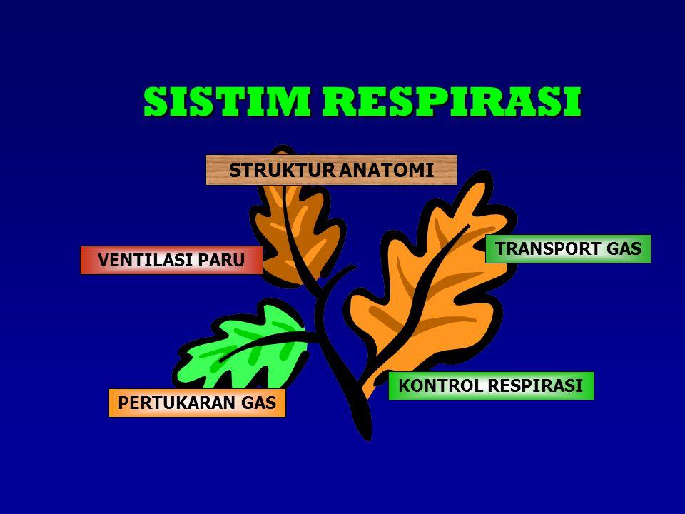 SISTIM RESPIRASI STRUKTUR ANATOMI TRANSPORT GAS VENTILASI PARU