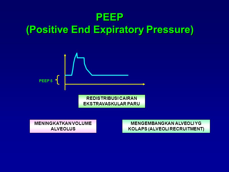 PEEP (Positive End Expiratory Pressure)
