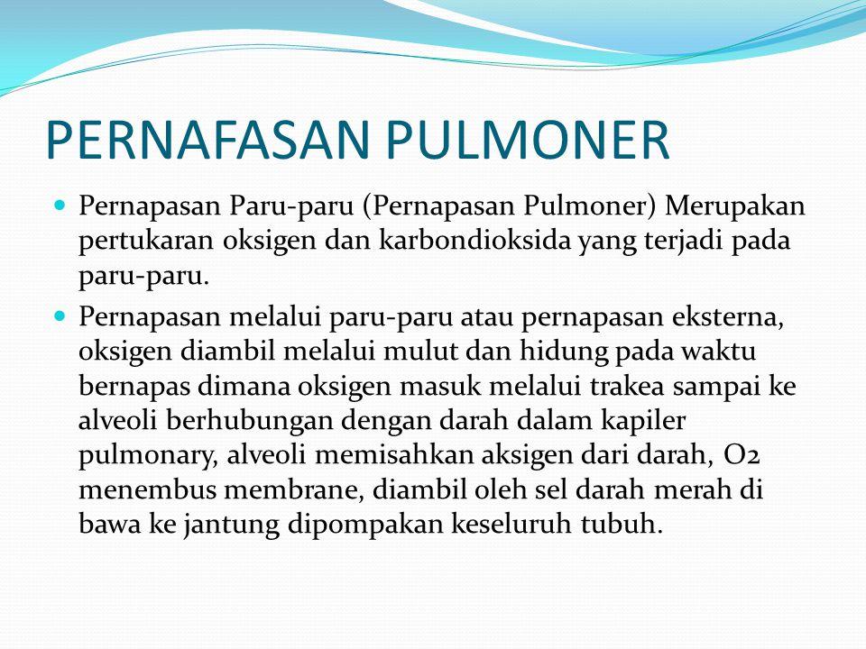 PERNAFASAN PULMONER Pernapasan Paru-paru (Pernapasan Pulmoner) Merupakan pertukaran oksigen dan karbondioksida yang terjadi pada paru-paru.