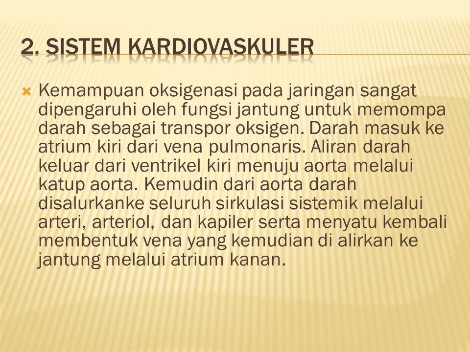 2. Sistem kardiovaskuler