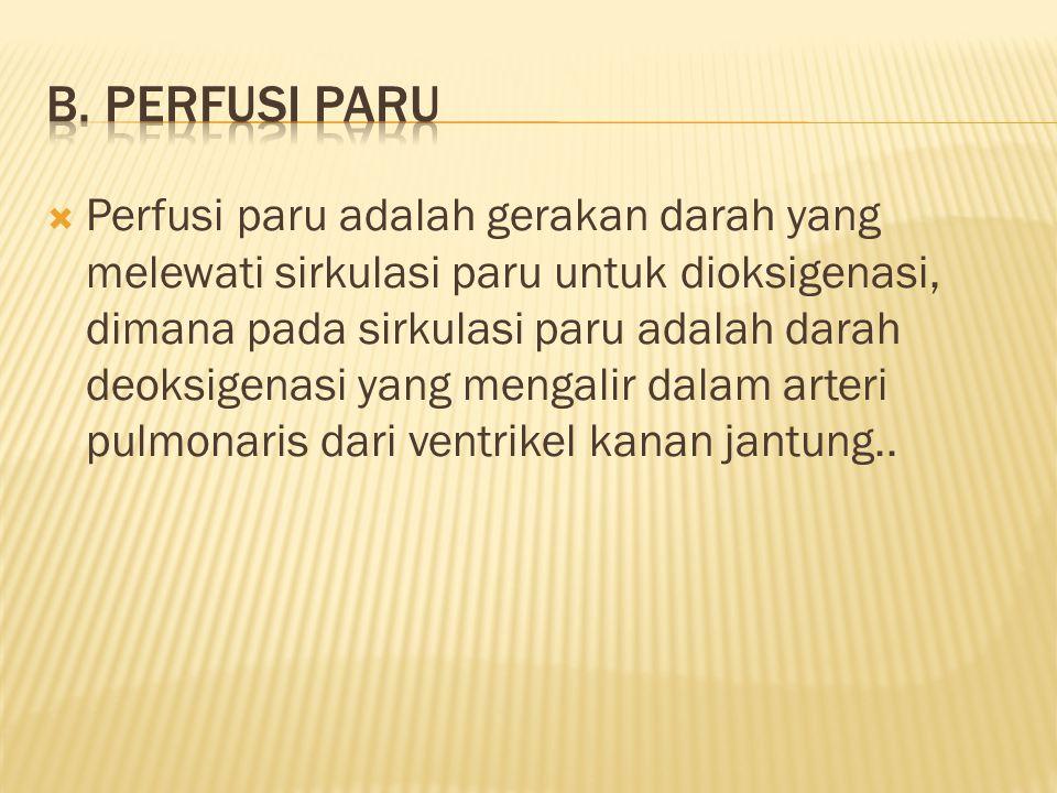 b. Perfusi paru