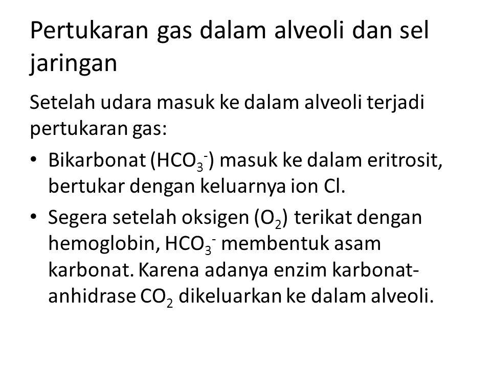 Pertukaran gas dalam alveoli dan sel jaringan