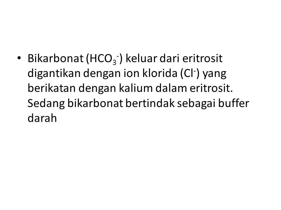 Bikarbonat (HCO3-) keluar dari eritrosit digantikan dengan ion klorida (Cl-) yang berikatan dengan kalium dalam eritrosit.