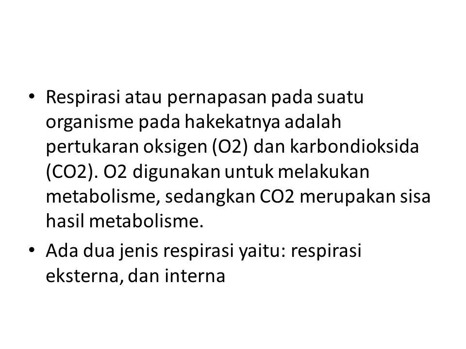 Respirasi atau pernapasan pada suatu organisme pada hakekatnya adalah pertukaran oksigen (O2) dan karbondioksida (CO2). O2 digunakan untuk melakukan metabolisme, sedangkan CO2 merupakan sisa hasil metabolisme.