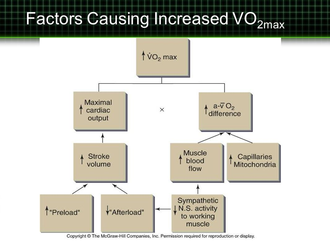 Factors Causing Increased VO2max