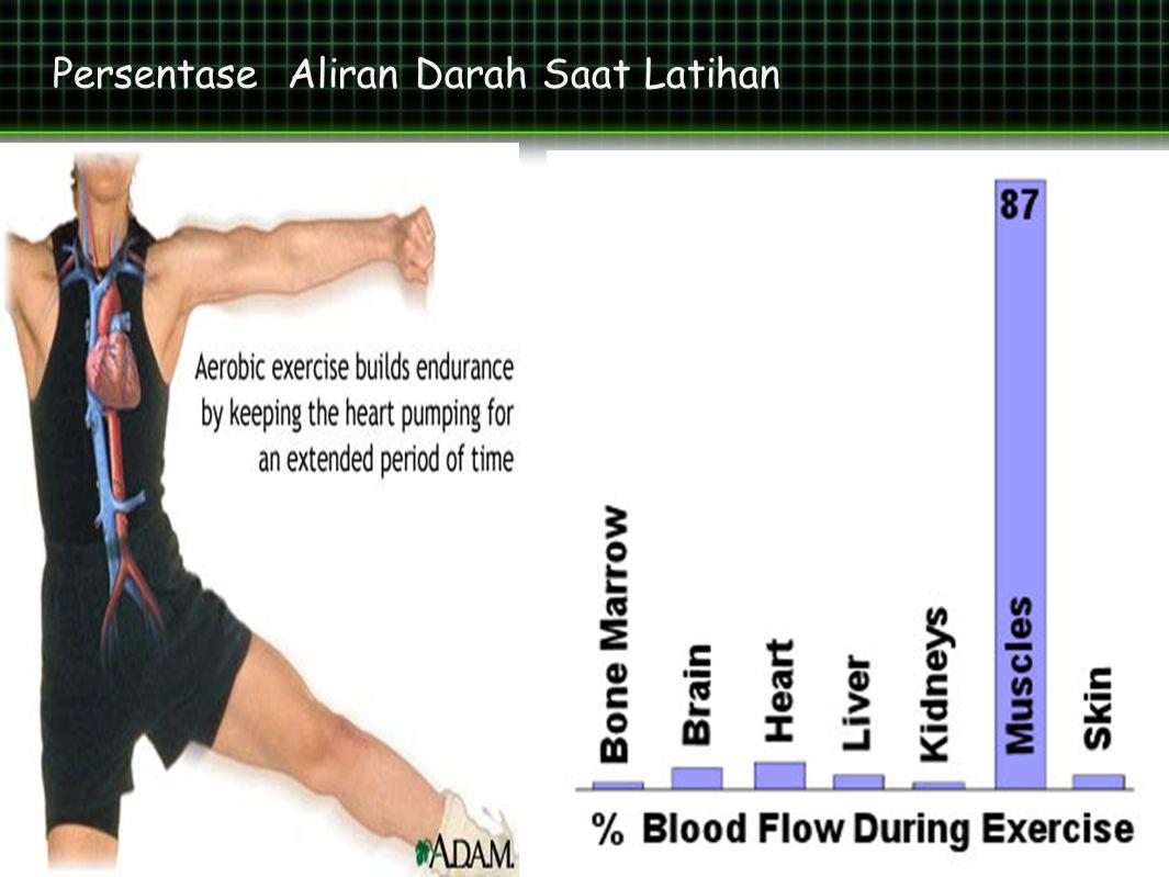 Persentase Aliran Darah Saat Latihan