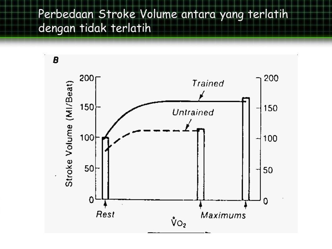 Perbedaan Stroke Volume antara yang terlatih dengan tidak terlatih