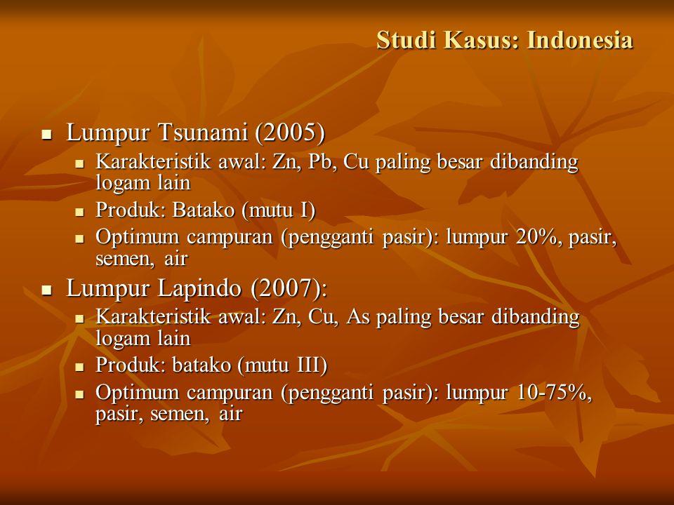 Studi Kasus: Indonesia