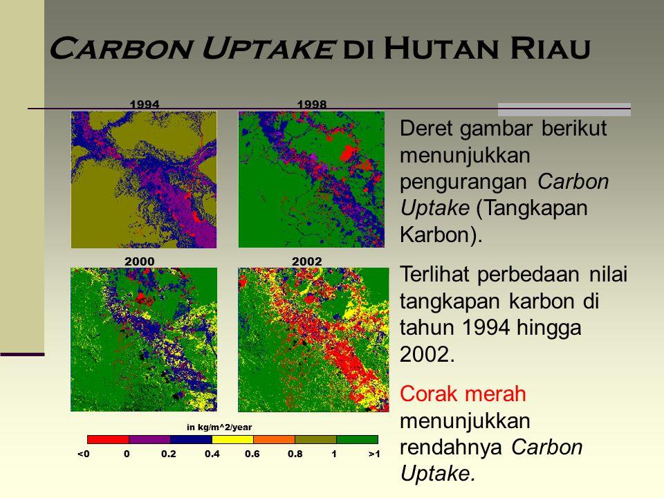 Carbon Uptake di Hutan Riau