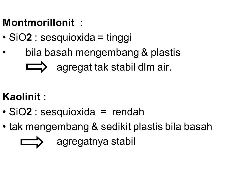 Montmorillonit : SiO2 : sesquioxida = tinggi. bila basah mengembang & plastis. agregat tak stabil dlm air.