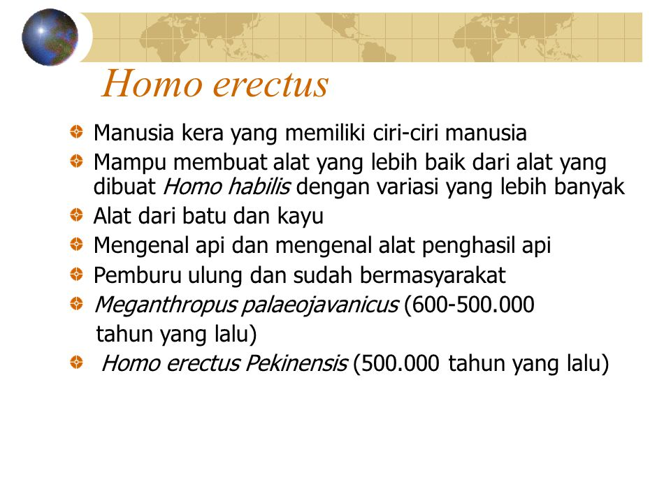 Homo erectus Manusia kera yang memiliki ciri-ciri manusia
