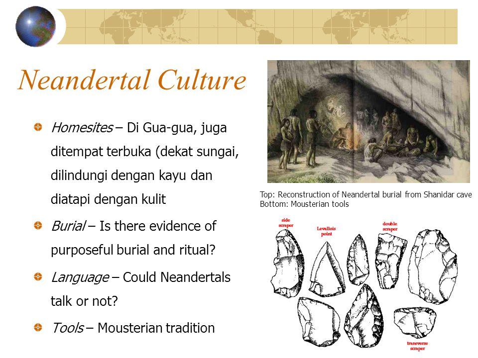 Neandertal Culture Homesites – Di Gua-gua, juga ditempat terbuka (dekat sungai, dilindungi dengan kayu dan diatapi dengan kulit.