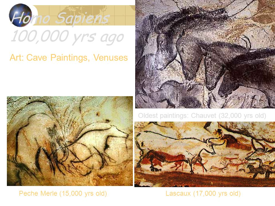 Homo Sapiens 100,000 yrs ago Art: Cave Paintings, Venuses