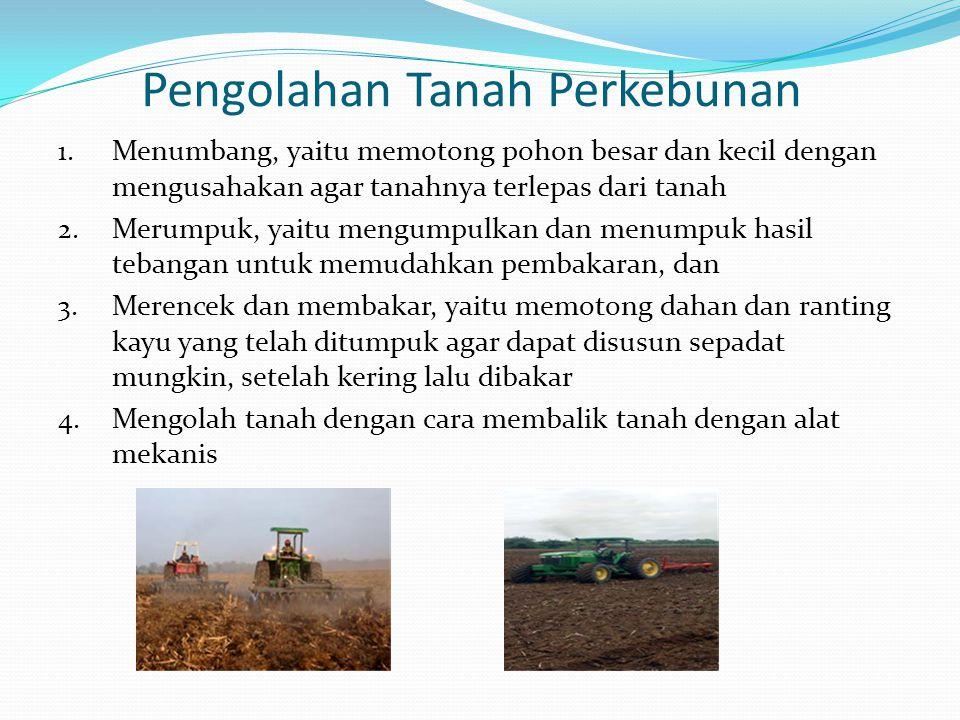 Pengolahan Tanah Perkebunan
