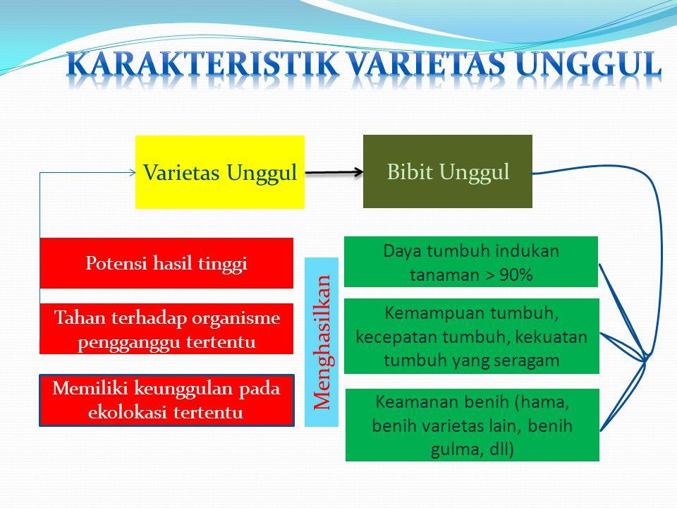 Karakteristik Varietas Unggul