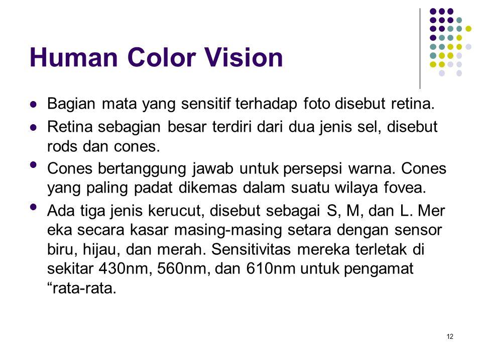 Human Color Vision Bagian mata yang sensitif terhadap foto disebut retina. Retina sebagian besar terdiri dari dua jenis sel, disebut rods dan cones.