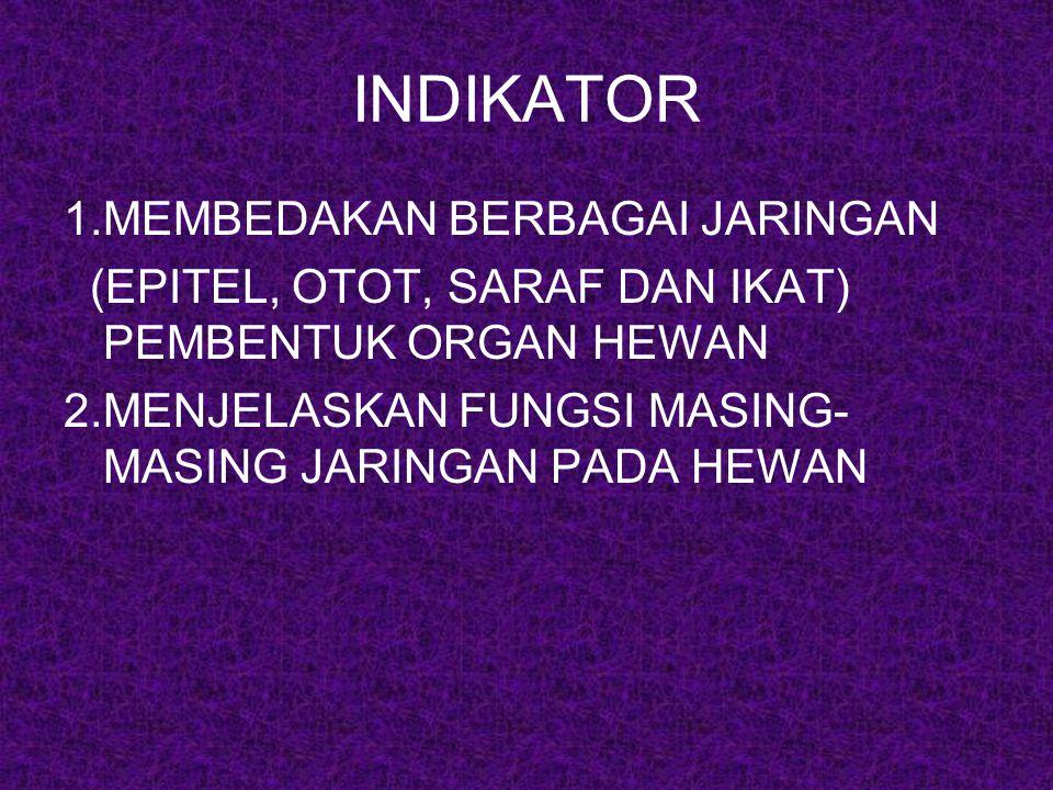 INDIKATOR 1.MEMBEDAKAN BERBAGAI JARINGAN