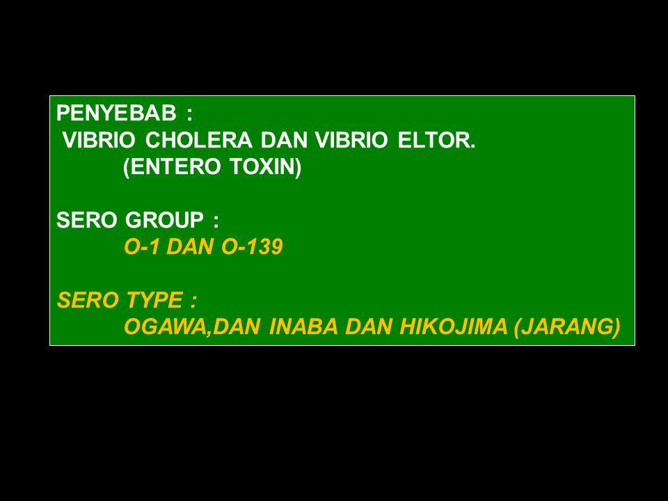PENYEBAB : VIBRIO CHOLERA DAN VIBRIO ELTOR. (ENTERO TOXIN) SERO GROUP : O-1 DAN O-139. SERO TYPE :