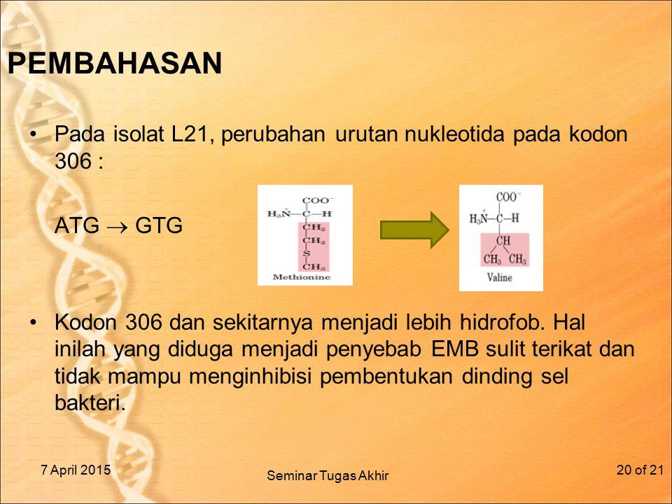 PEMBAHASAN Pada isolat L21, perubahan urutan nukleotida pada kodon 306 : ATG  GTG.