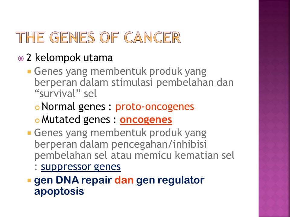 The Genes of Cancer 2 kelompok utama
