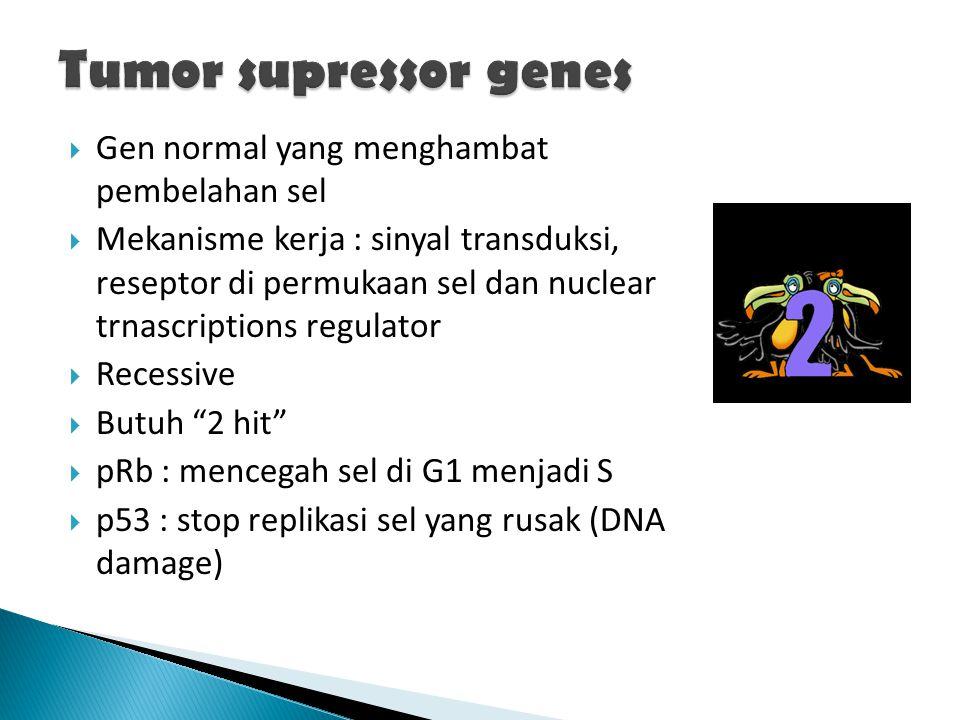 Tumor supressor genes Gen normal yang menghambat pembelahan sel