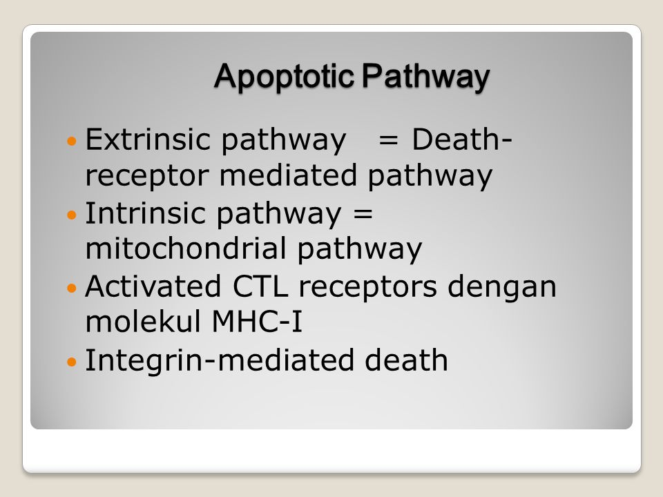 Apoptotic Pathway Extrinsic pathway = Death- receptor mediated pathway