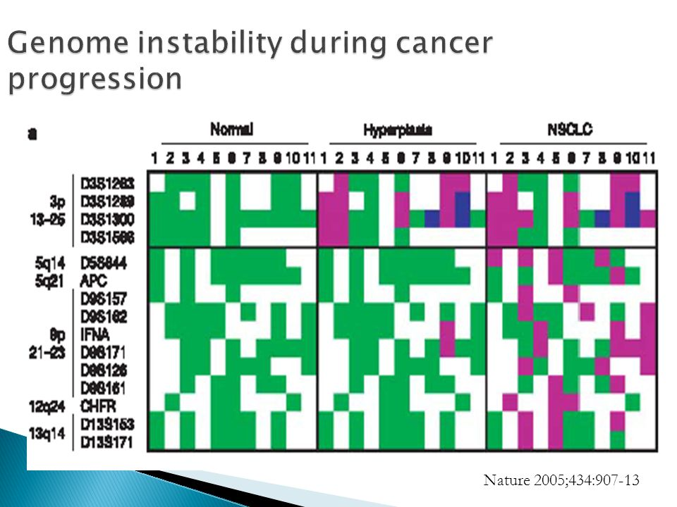 Genome instability during cancer progression