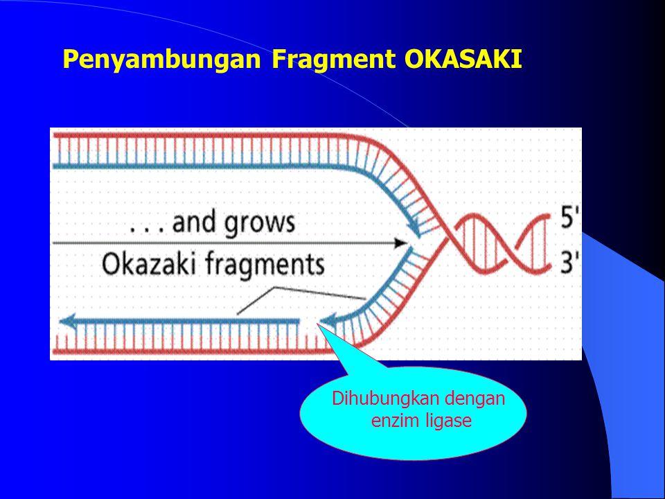 Penyambungan Fragment OKASAKI