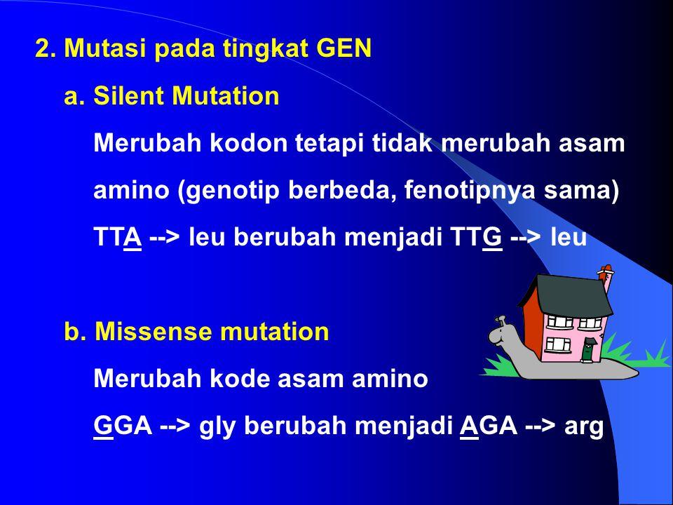 2. Mutasi pada tingkat GEN
