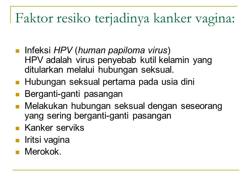 Faktor resiko terjadinya kanker vagina: