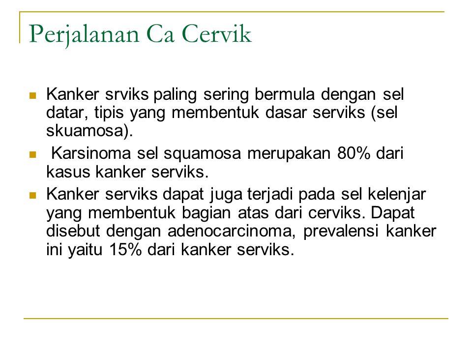 Perjalanan Ca Cervik Kanker srviks paling sering bermula dengan sel datar, tipis yang membentuk dasar serviks (sel skuamosa).