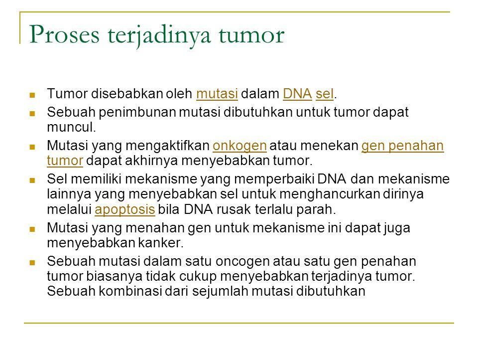 Proses terjadinya tumor
