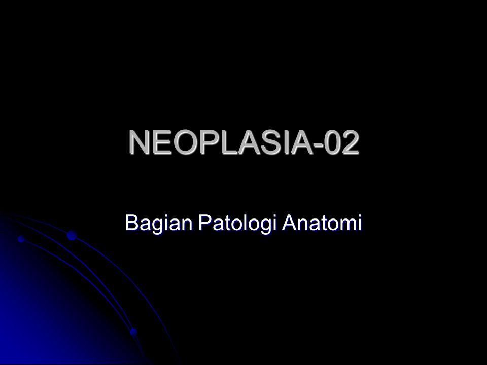 Bagian Patologi Anatomi