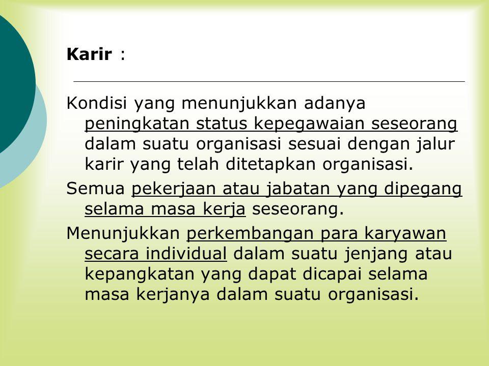 Karir :