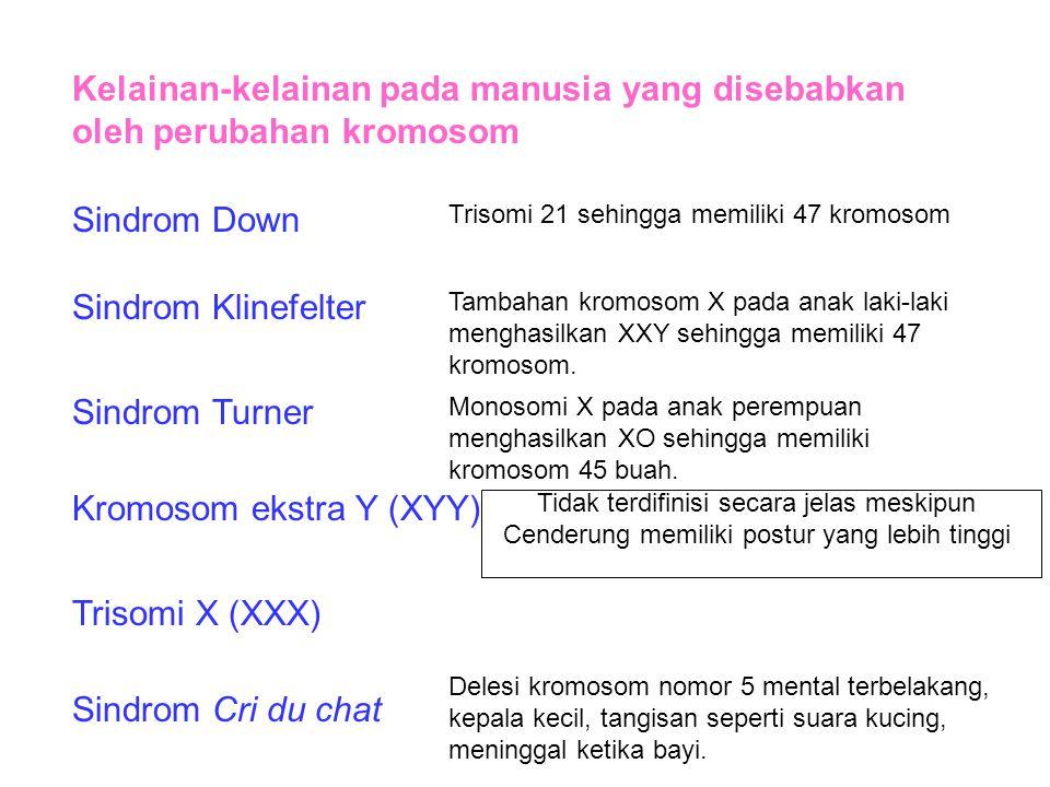 Kelainan-kelainan pada manusia yang disebabkan oleh perubahan kromosom